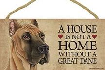 Great Dane Dog Lover / Everything you love about the Great Dane!