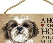 Shih Tzu Dog Lover / Everything you love about the Shih Tzu!