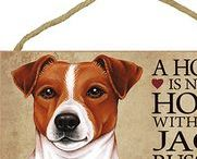 Jack Russell Terrier Dog Lover / Everything you love about the Jack Russell Terrier!