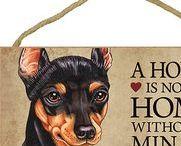 Miniature Pinscher Dog Lover