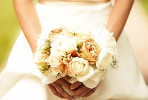 Wonderful Wedding Odds and Ends / All of the things that I want to keep track of that would be good ideas for a wedding or themes I like. There are a lot of items here hinting at my indecision about my wedding in 2015. / by Rebecca Hornsby
