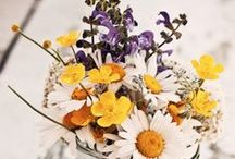 Flowers / by Livie Vaughan