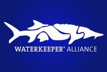 Waterkeeper Alliance / In September of 1999, Mobile Bay Watch, Inc. became affiliated with the international organization, Waterkeeper Alliance. The Alliance's mission of championing clean water and protecting the watershed's communities, ecosystems, and water quality fit well with MBW's mission of providing citizens the means to protect the beauty, health and heritage of the Mobile Bay watershed.