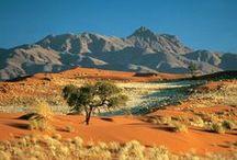 Desert - Namib Kalahari