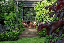 Glorious Gardens / Different images of beautiful grades, and how to create your own beautiful garden.