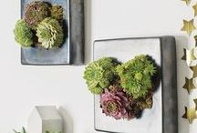Trend Watch: Botanicals / Botanicals are brilliant way to bring the home to life. Ever leaders in style and trend, our sellers have been busy designing and making beautiful, herbaceous art for your home. With more flowers than an RHS show, and prints designed with nature in mind, you'll have everything you need to celebrate brilliant botanicals in the home this season. / by notonthehighstreet.com