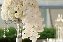 Heavenly Wedding Ideas / by Pamela Copeman