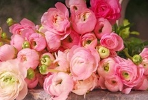 flowers for weddings and parties / flowers and floral details for weddings and parties