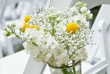 Wedding Colours - Yellow and White