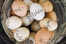 Eggcelent Easter Eggs / Some of our favorite Easter Egg decorating ideas for your favorite holiday!