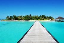 P A R A D I S E * O N * E A R T H / PARADISE ON EARTH, AMAZING SEA RESORTS AND ISLANDS / by Almara Shop