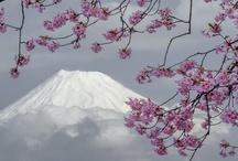 Japan--Fujisan / by Bonnie Koenig