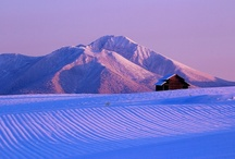 Japan--Hokkaido / by Bonnie Koenig