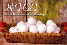 All About Eggs / Facts, Tips and Tricks on the Incredible Egg!