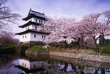 Japan / Inspiration for a holiday to Japan