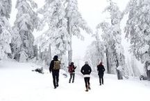 W I N T E R * A D V E N T U R E / Winter hikes - sometimes a bit exhausting, but always a wonderful experience. Love hiking!