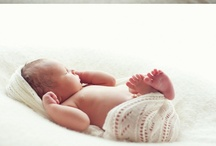 Newborn Photography / by Amy Bowman