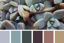 Pleasing Palettes / Inspirational colors! / by Katherine Hall