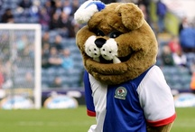 Rovers Mascot / by Blackburn Rovers