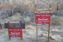 Hikes in Joshua Tree / Hikes in Joshua Tree National Park / by Backpacker Magazine
