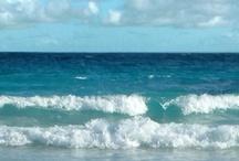 Beaches / by Bridget Scoggins