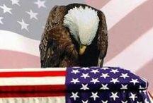 America / by Cheryl Krauss