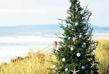 Coastal Christmas / by Bridget Scoggins