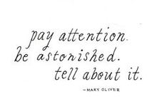 "Pay Attention / ""Pay attention. Trust Life. That will be enough."" ~ Metta Zetty"