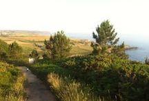 """Sendas de Luanco - Gozón / Nuestras región tiene muchas sendas tanto costeras como en el interior preciosas e importantes. Si te gusta hacer, caminar """"sendas""""...""""Este es tu sitio"""""""