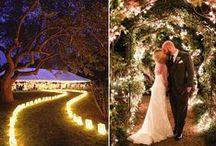Wedding / Wedding Everything
