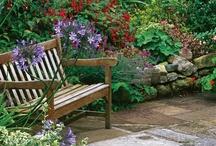 Garden Ideas / by Debbie Petras