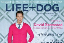 LIFE+DOG Magazine Covers