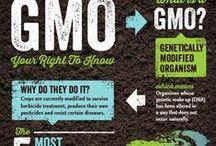 NO MORE GMOS / by Carolyn Carr