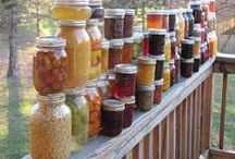 Gardening & Preserving Food / A collection of the best gardening and food preservation tips, ideas, and tutorials.