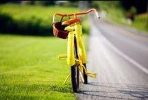 :ღ♥:Bicycles:♥ღ: / by Steph