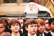 potterworld. / Because I love Harry