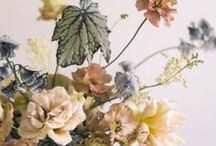 FLORALS / Floral inspriation for home and for your wedding!