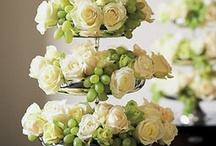 Party- Food Display, Centerpieces, Tablescapes