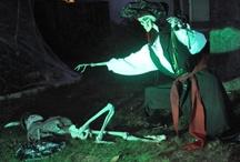 Halloween- Pirate