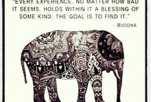Quotes / by Lindsay Stull