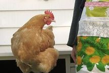 Dottie Angel quilt