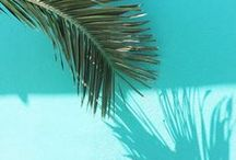 Turquoise / Charming Charlie Turquoise, Cyan & Aqua Style Inspiration