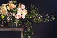 Floral Design  / by JB Maryn