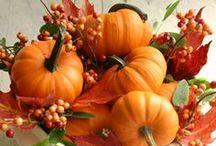 Fall Favorites / by JB Maryn