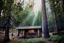 moose lodge / by Marissa