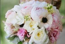 Bouquets / by Tope Olanrewaju