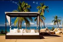 Sea, sun and palms