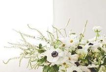 [[ Beautiful Blooms ]]