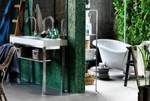 Bathrooms / by Stephanie Niebler
