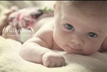 Newborn Photos / by Stacy Dorn